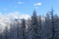 «Зима в горах» автор Андрей Наумов